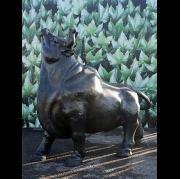Cast Iron Bulls