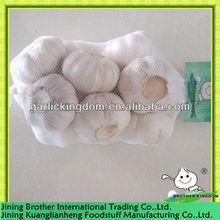 500g China garlic normal white in mess bag