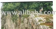 SALE OR LEASE OF ROCKS FOR QUARRY
