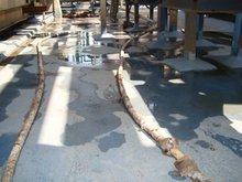 Masterguard Waterproofing membrane