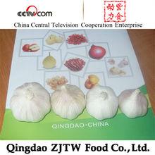 Supply 4.5cm 5.0cm 5.5cm 6.0cm Fresh White Garlic Shandong Produced