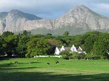Luxurious Residences Near Cape Town
