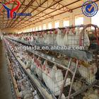 automatic ladder chicken coop