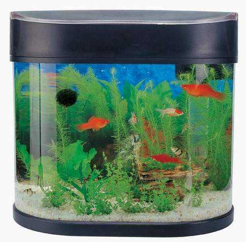 Aquarium supplies india aquarium starter kit sun swirl for Low maintenance fish tank