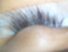Eyelash Extensions, Kit, Glue, Tweezers