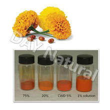 Hot Sale Marigold Flower Extract Cataract Herbal Treatment