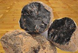 amber-like copal resin chunks