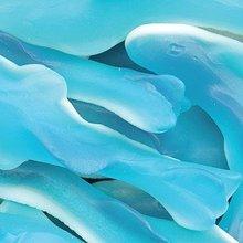 Blu gummallos squali gommoso: 5lb caso
