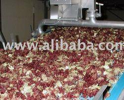 Salad processing equipment