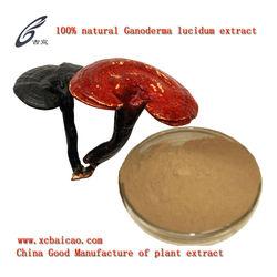 Ganoderma lucidum extract Polysaccharide & Triterpene