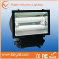 Nuevo estilo de lastre electrónico 65 w, inducción de inundación de luz, dc 12v led de luz de inundación 30 vatios