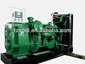 sudong série energia verde de baixo consumo de combustível 100 kva biomassa conjunto gerador de gás