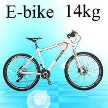 Perfect appearance design 350W hub motor electric bike