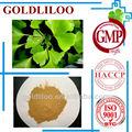 Gmp & HACCP Ginkgo Biloba folha pó extrato orgânico de alta qualidade