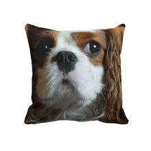 pets sublimation promotional plush cushion