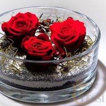 - conservado, estabilizado de rosas