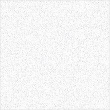 Regency Floor Tile for Living Room,Dining Room,Kitchen,bathroom