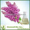 100% óleo de cravo Natural eugenol óleo para venda