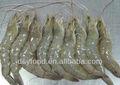 frozen vannamei crevettes