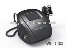 Active market portable cryolipolysis weight lose machine