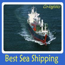 China best sea shipping Turkey--- roger