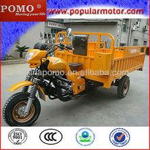 Hot Popular New Gasoline Motorized Large Heavy 300cc Smart Trike