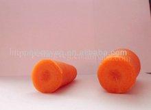 2013 Hebei New Harvest Fresh Carrot(Meng Dai Er Corp)