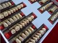 los dientes de acrílico dental metrial heraeus de dientes de resina de la dentadura