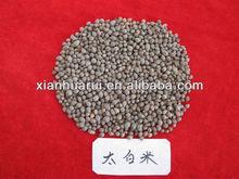 Chinese Herb Notholirion bulbuliferum