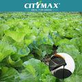 aminoácido fertilizante líquido orgânico