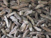 Dried seacucumber
