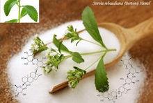 Stevia Extract 20%-98% HPLC