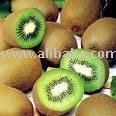 Vendita di mele, kiwi, melograno, cachi freschi frutta
