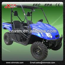 XTM A500-1 electric utv utility vehicle