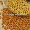 dried fruit peanut importers turkish peanuts