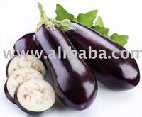 Golden Valley Eggplant