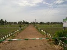 plot land