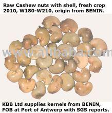 RAW SUNDRIED CASHEW NUTS /SHELL (BENIN2012)