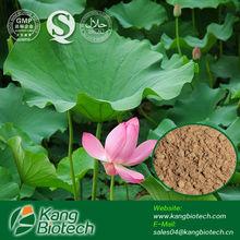 Chinese Weight Loss Pills Ingredients Nelumbo Nuciferea Gaertn. Extract Nuciferine 2% Powder Hplc