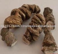 Rhizoma Paridis Himalayan Herbs