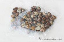 frozen baby clam