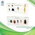 qianfan 6 أنواع النافعة، تدريس العلوم الطبية الحشرات الآفات