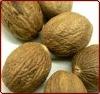 Nut Megs