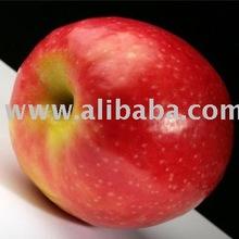 african sweet apple