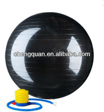 2000lbs Anti Burst Exercise Stability Ball with Pump