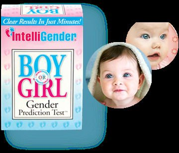 intelligender