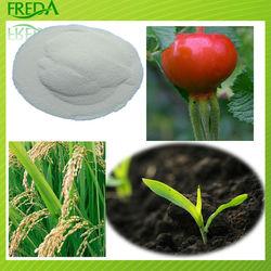 bio fertilizer poly glutamic acid