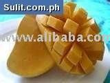Fresh Philippine Carabao mango, dried mangoes and frozen diced mangoes, puree