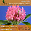 Trifolium pratense flower Extract | Red Clover flower Extract (Trifolium pratense flower P.E.)