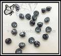 مولودية chaton الماس اللون الأسود زر